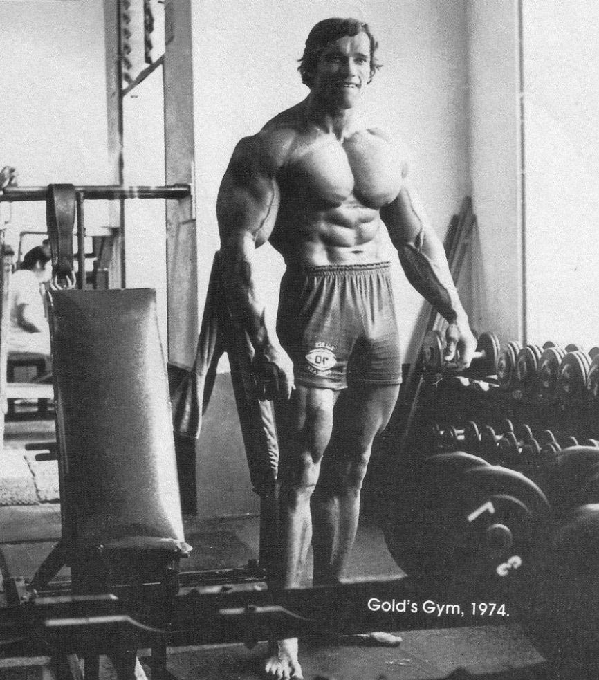 Superb Arnold Schwarzenegger Bodybuilding Workout