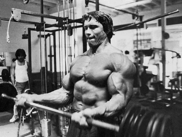 Arnold Classic Workout Biceps