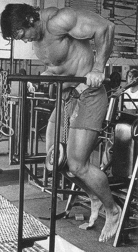 Arnold Classic Workout triceps