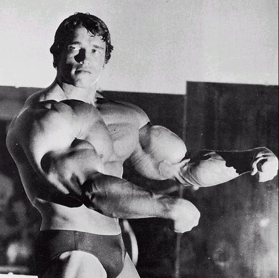 Arnold Classic Workout - Perfect arm