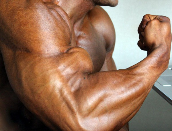 Bodybuilding Myths, part 1