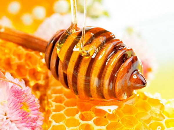 Honey – The Nectar of Nature