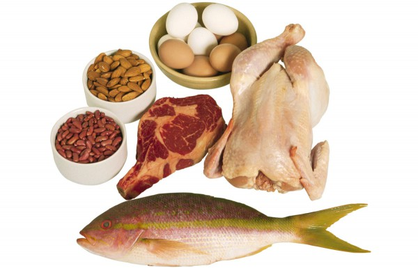 What are Some Popular and Healthy High Protein Foods for Bodybuilders